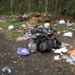 rubbish dumpers