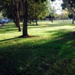 2biggepark-1