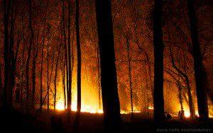 Bushfires are unfortunately part of summer in Australia
